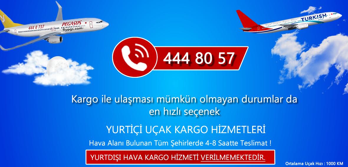 Ankara Uçak Kargo Hizmetleri Thy Kargo
